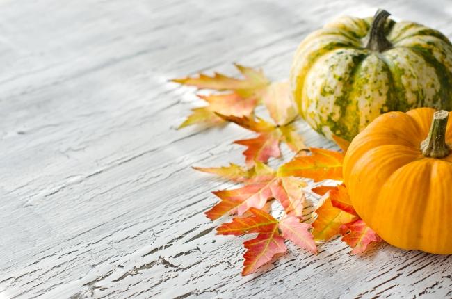 PumpkinBackground_217741462
