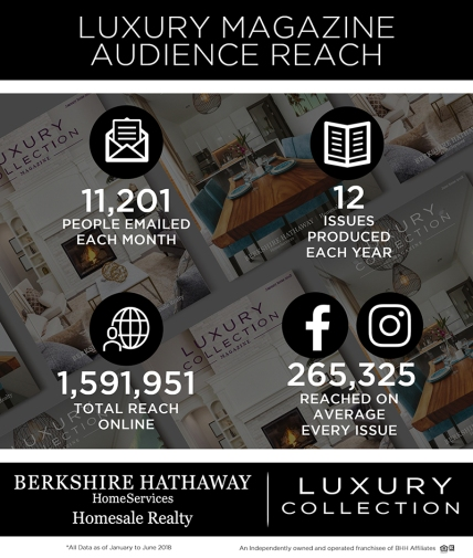 6 months Luxury Magazine Stat Graphic