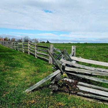 Gettysburg battlefield - Amy Faux.jpg